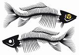 fish bones, vector