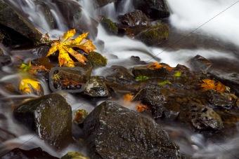 Autumn Waterfall, nature stock photography