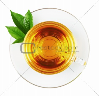 Cup with tea and green leaf
