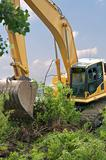 Heavy Equipment Strips Vegetation