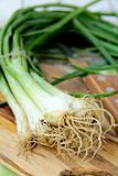 young green organic onions on a wooden board