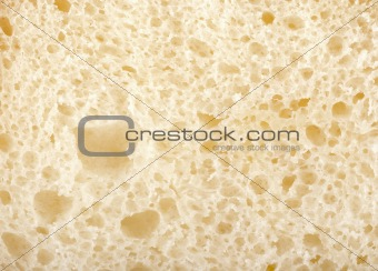 Background and texture white bread