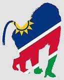 Baboon Namibia