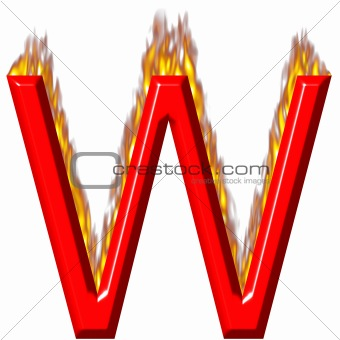 3D Letter W on Fire
