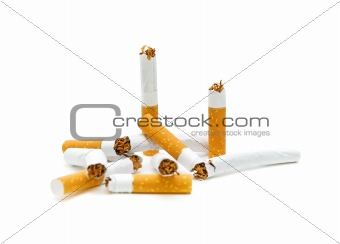 broken cigarette on a white background. No smoking.
