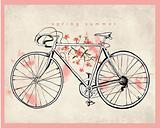 flower vintage bicycle illustration