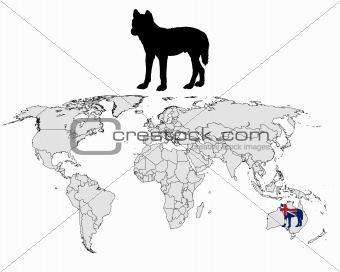 Australian Dingo range