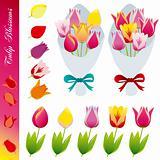 Tulip blossom icons set
