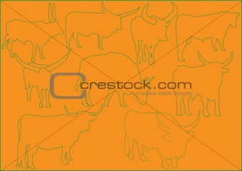 cattle illustration collection - vector