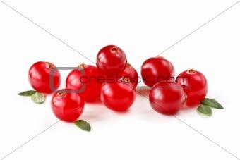 Fresh cranberries.