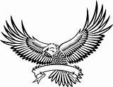 Eagle with emblem