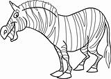 cartoon zebra for coloring book
