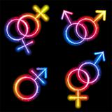 Male, Female and Transgender Gender Symbols Laser Neon
