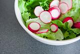 Bowl of fresh green salad