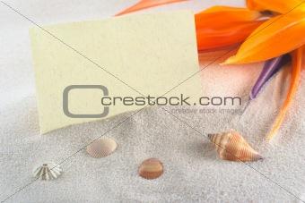 Blank Card in Beach Setting