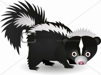 Skunk cartoon