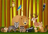 Animal cartoon