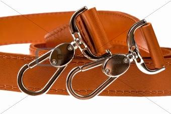 pair of belt clasps