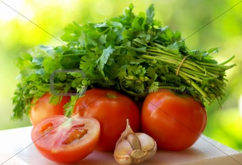 Tomato, garlic and green cilantro.