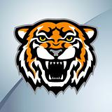 Tiger head mascot color