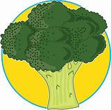 Broccoli Graphic