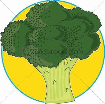 Broccoli Graphic