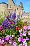 flowers in front of castle