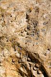 surface of shell rock