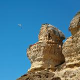 seagull in blue sky near sandstone cliff