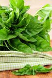 bunch of fresh basil on a napkin on the table
