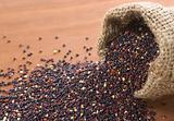 Raw Red Quinoa Grains