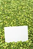Split Dried Green Peas with Card