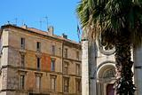 old houses and palm