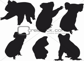 koala silhouette collection