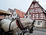 Horse Carriage and Frame Houses