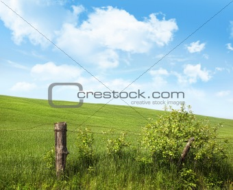 Country fence with flowers with blue sky