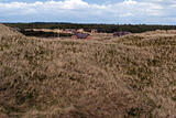 Grass dune and sommerhouses