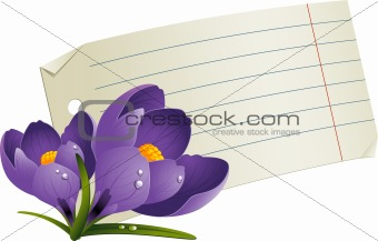Blank paper with flowers for a romantic message