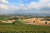 Piedmont landscape.