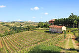 Old farmhouse and vineyards in northern Italy.