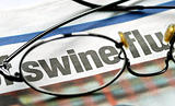 Focus on swine flu