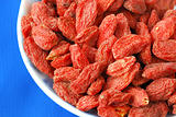Goji berries also called wolfberries isolated on blue