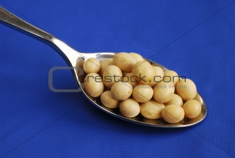Close up view of a spoonful of soy beans isolated on blue