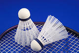 Badminton shuttlecock and racket