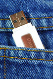 USB flash memory jump drive in a jeans pocket concepts of data mobility