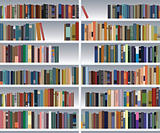 vector modern bookshelf