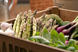 Freshly harvested asparagus in crate