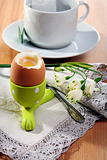 Brown soft boiled egg in the eggcup. 