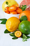 Assortment citrus fruit..