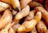 Organic sweet potatoes at market
